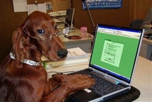 I'm Thankful for People Smarter than Me that Actually Write Books