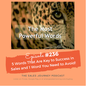 236 5 words that are key to success in sales and 1 word you need to