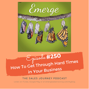 #250 How To Get Through Hard Times in Your Business