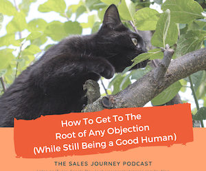 #262 How to Get to the Root of Any Objection